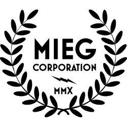 Elvox Video Door by Mieg Corporation